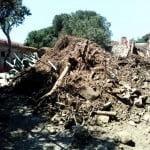 Yassıada'da kilise kalıntıları ve gömü bulundu iddiası