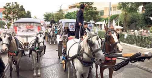 Büyükada'da faytonlu Beşiktaş festivali