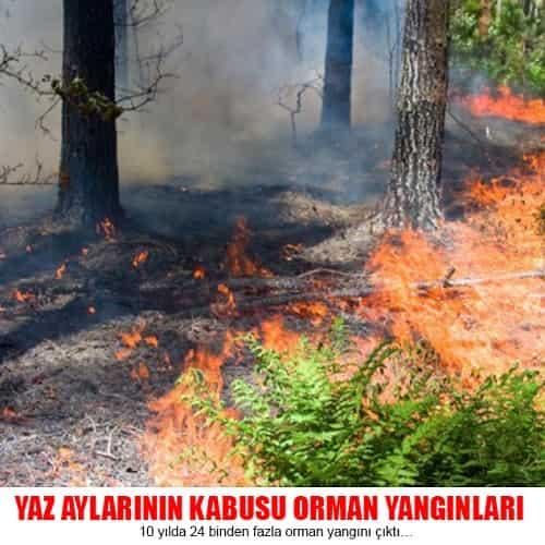 10 yılda 24 binden fazla orman yangını çıktı