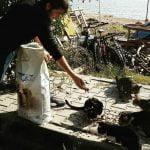 MHP Adalar İlçe Başkanlığı 62 kg kuru mama dağıttı