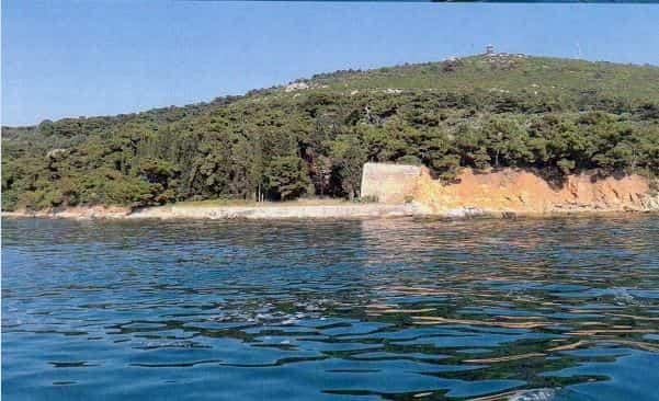 Fethi Okyar korusu için Adalar Belediyesine sorduk!