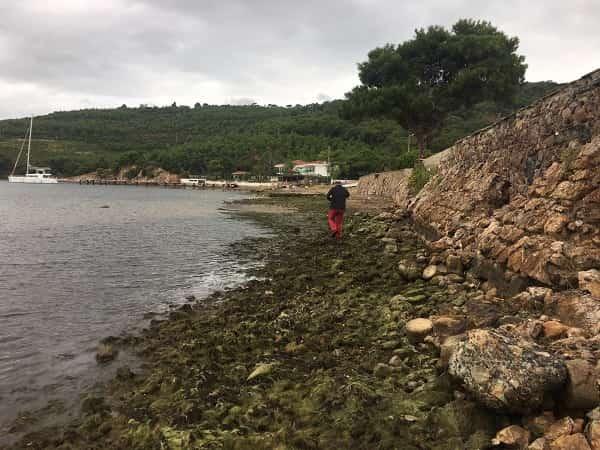 Heybeliada'da Korkutan Olay: Deniz 1 Metre Çekildi