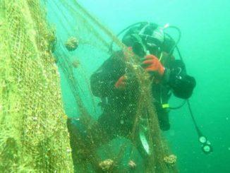 Çanakkale ve Adalar'da ağlar temizleniyor