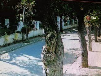 İngiliz ajanının Büyükada'da marangoza giderken çekilen son görüntüleri ortaya çıktı