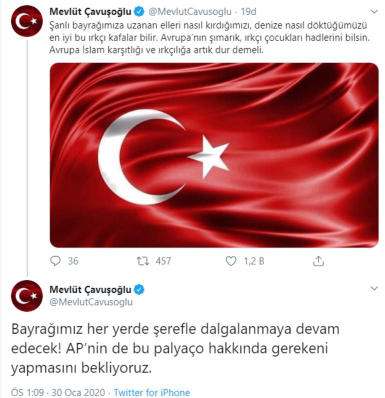 Son dakika haberler... Bakan Çavuşoğlundan Türk Bayrağını yırtan ırkçı vekile sert tepki