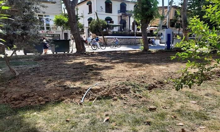 mehmet-boluk-parki'ndaki-agaclar-durak-icin-katledildi!