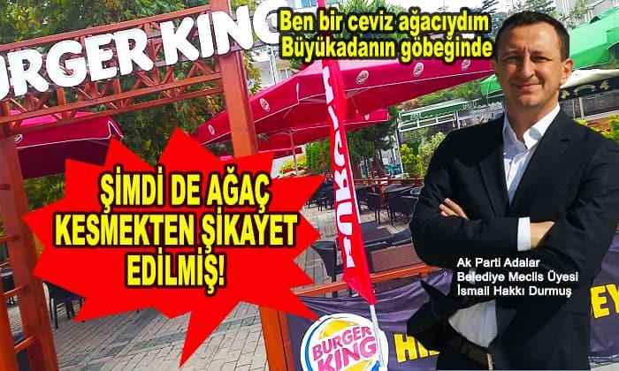 AKP meclis üyesi şimdi de ağaç kesmekten şikayet edilmiş!